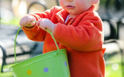 Force, Wonder, Gentleness: Life & Leadership Lessons from a Toddler
